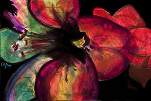 Red Flower - Decorative Impressions by Ann Lutz