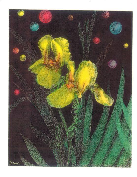 Iris - GaryJamesArts.com
