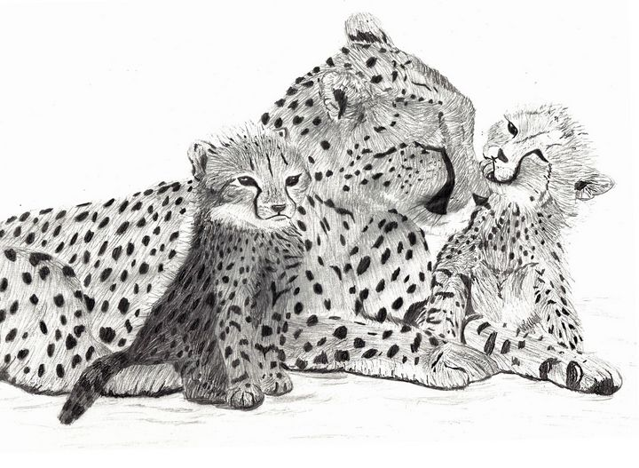 Cheetah and cubs - ArtinMisery