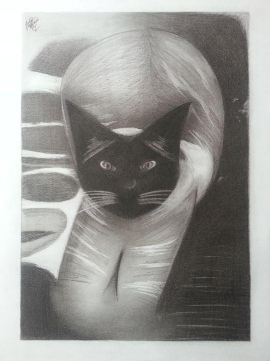 Roxy Portrait - JH Designs