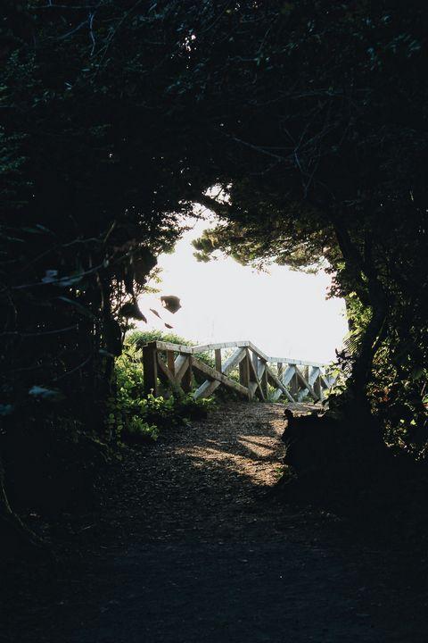 Nature's Door - Maivab Adventures