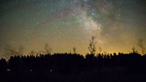 Milkyway Over Pines