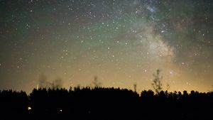 Milky Way Rising Over Pines