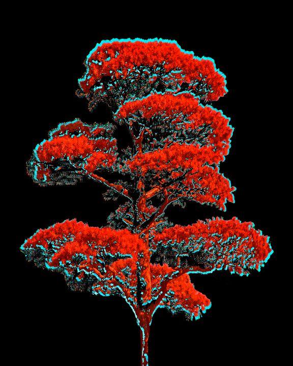 Tree Artwork Illustration - Photography