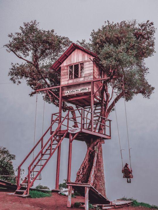 Treehouse Banos Ecuador - Photography