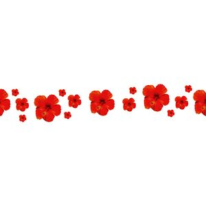 White Background With Red Flowers De