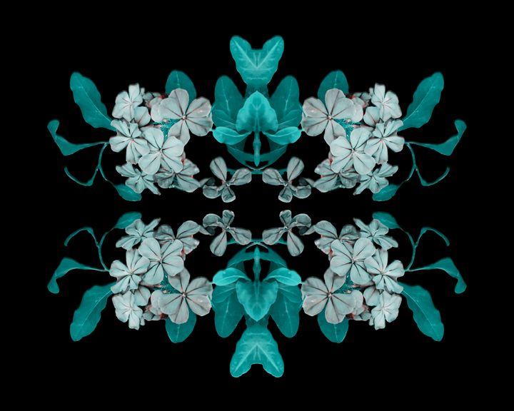 Fantasy Floral Ornate Artwork - Photography