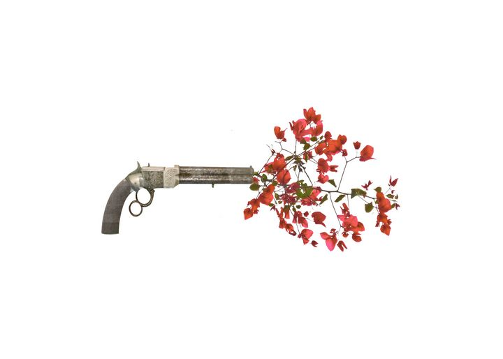 Gun Shooting Up Flowers - Photography