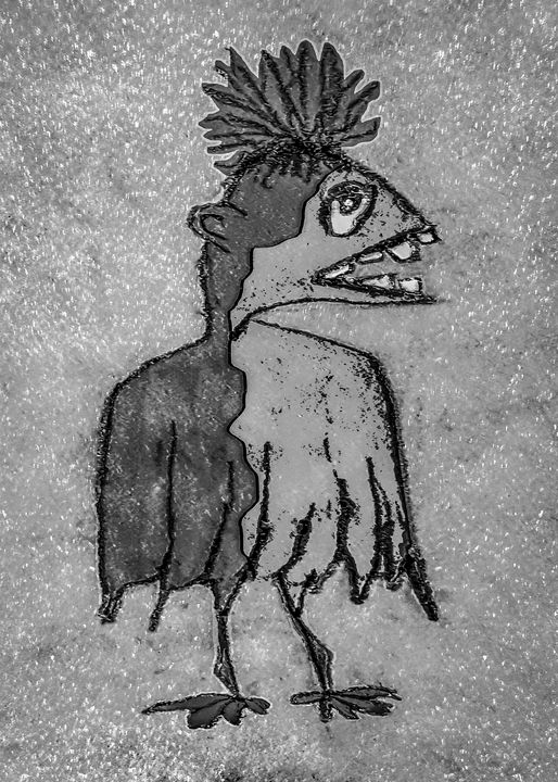 Sketchy Style Bird Drawing - Photography