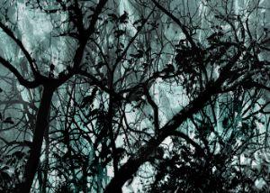 Leafy Dark Nature Background