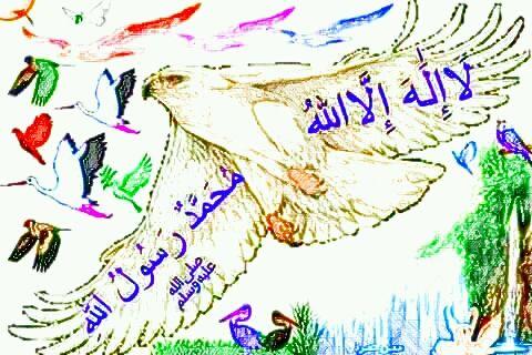 Allahu Akbar - ola arts