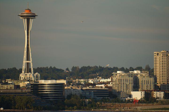 Seattle Skyline - Julie McDaniel Fine Art