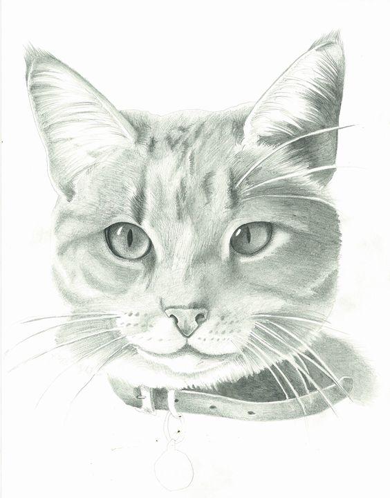 Kitty Cat - Ben's Brushes
