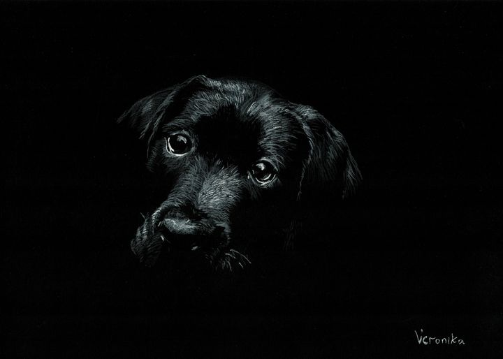 Dog - Veronika_art