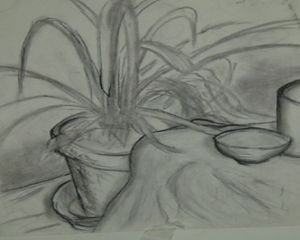Plant and dishes - Bob Belush