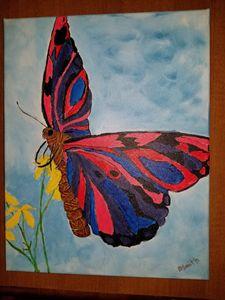 Wild NY Butterfly!