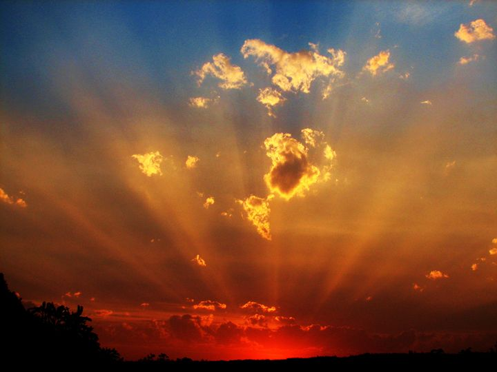 best sun rays - louie bouwer