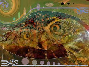 Hurlevent Owl