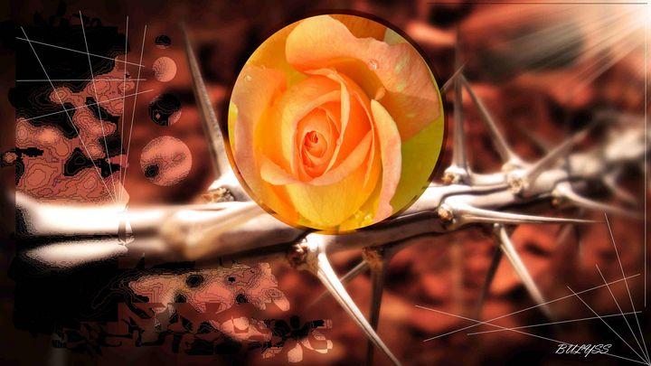 Thorns of Love - Bulyss Marc