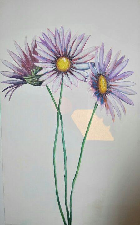 Three daisy - ArtNikolaeva