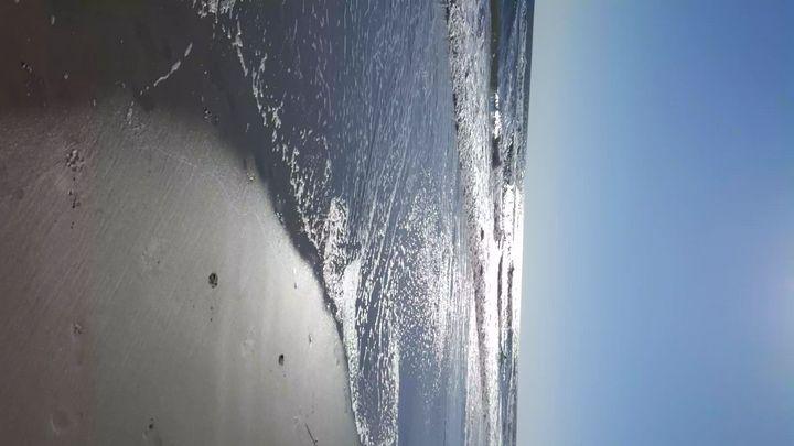 Sun at the Beach - Brandi Berger