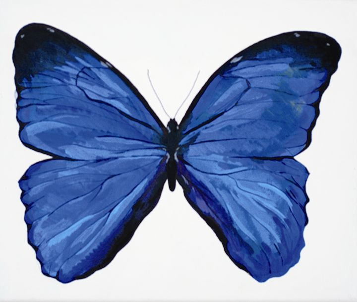 Butterfly 2 - Fine Art by Anastasia Dorokhov