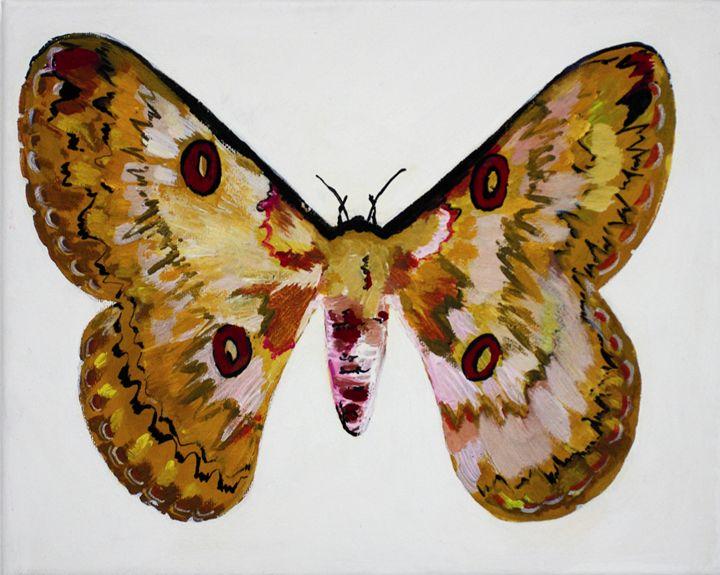 Butterfly 3 - Fine Art by Anastasia Dorokhov