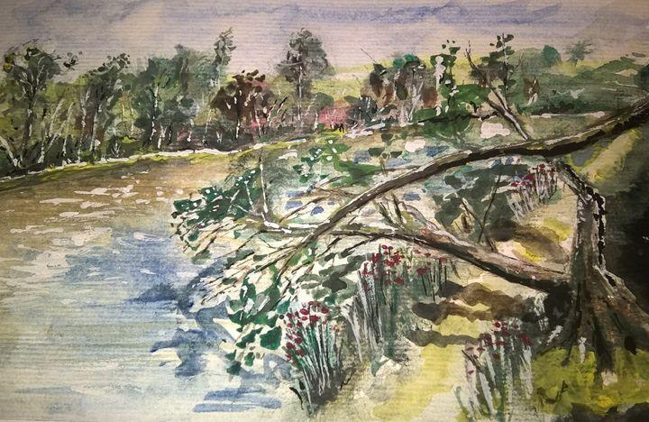 Sunny path - Art Edin S