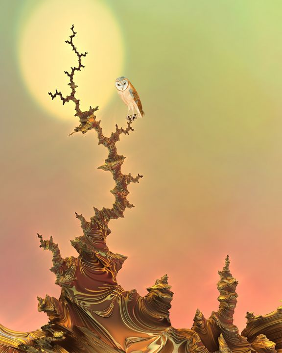 Owl on Tree at Sunset Fractal - Glenda Popielarski