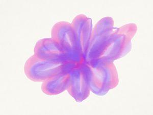 Pink & purple flower haze