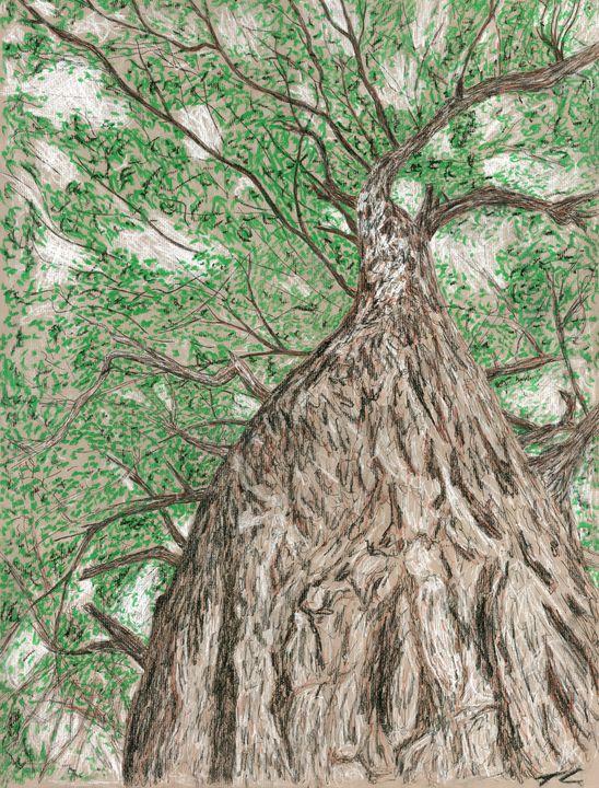 Towering Oak - Thomas Contino