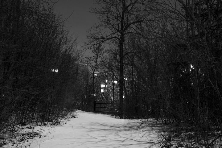 Heritage Park in the Moonlight - Thomas Contino