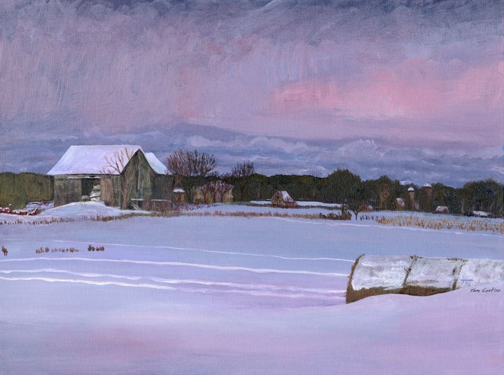 Old Barn in Belleville, Winter - Thomas Contino