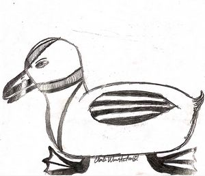 Thousand Dollar Duck