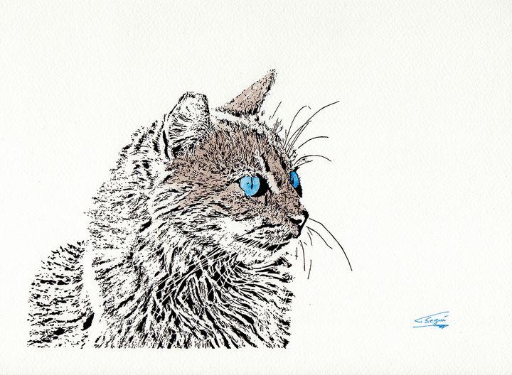 Cat - Carlos Segui