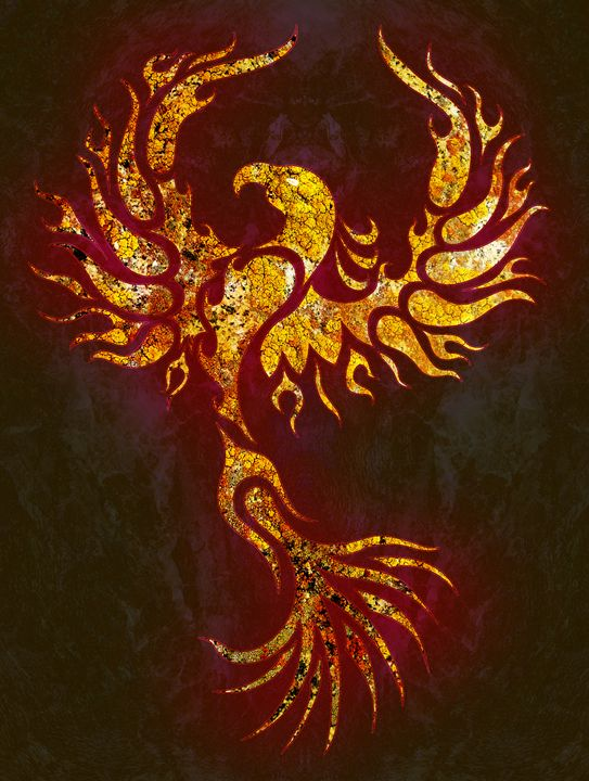 Fiery Phoenix - Robert Ball Fine Art & Photography