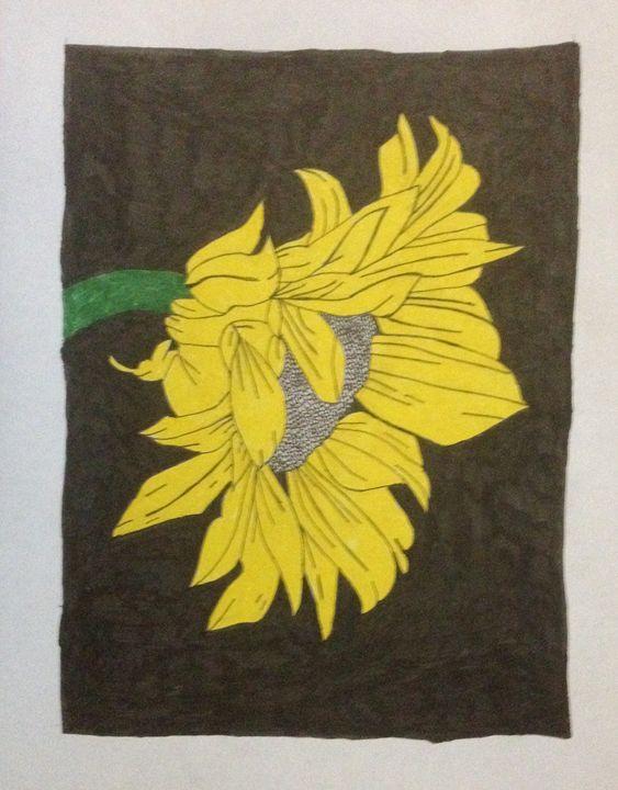 Sunflower 1 - Shark inc.