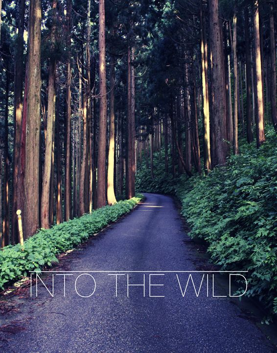 Into the Wild Poster - Relax, You've Found My Gallery.