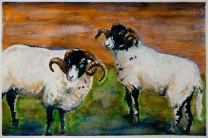 The Rams of Lastingham
