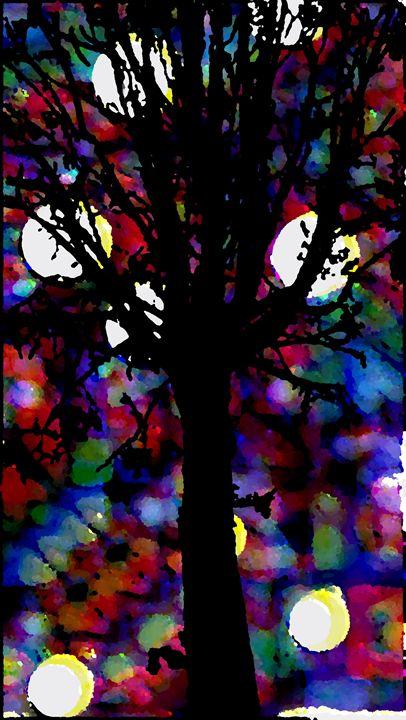 Magical Winter's Night - Mardelbolart