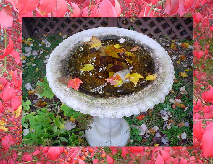 FALL BIRDBATH - Cathy Dettlinger