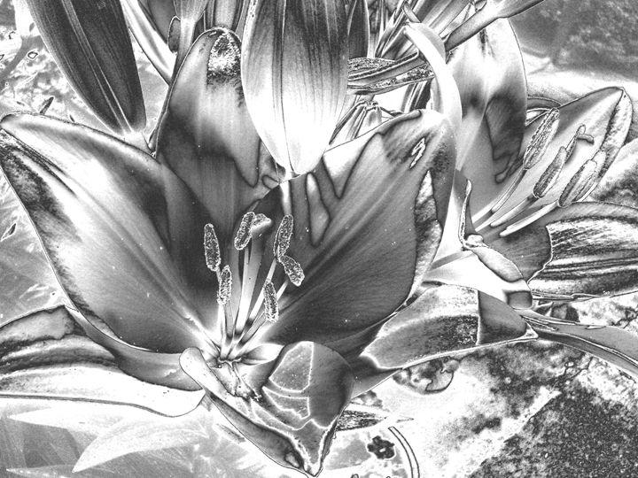 CHROME FLOWERS - Cathy Dettlinger