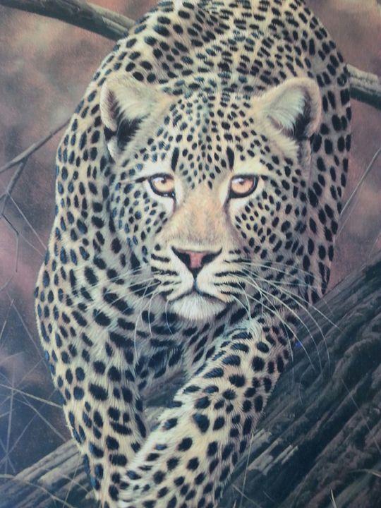 Silent Stalker (close up of image) - WAG