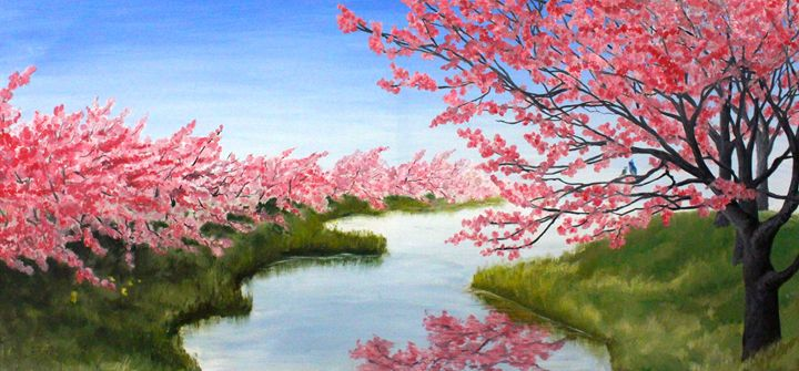 Japanese Cherry Blossom - Quinn Do