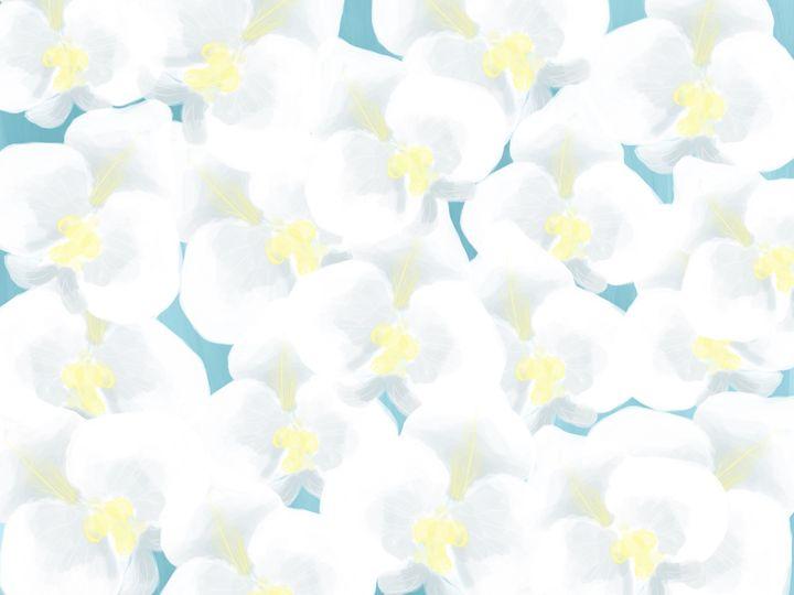 orchids - MELE