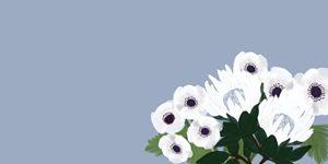 white flowers - MELE