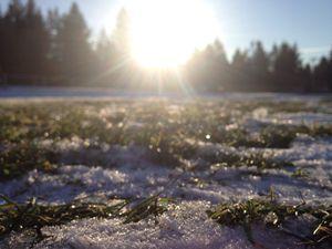 A spring melt