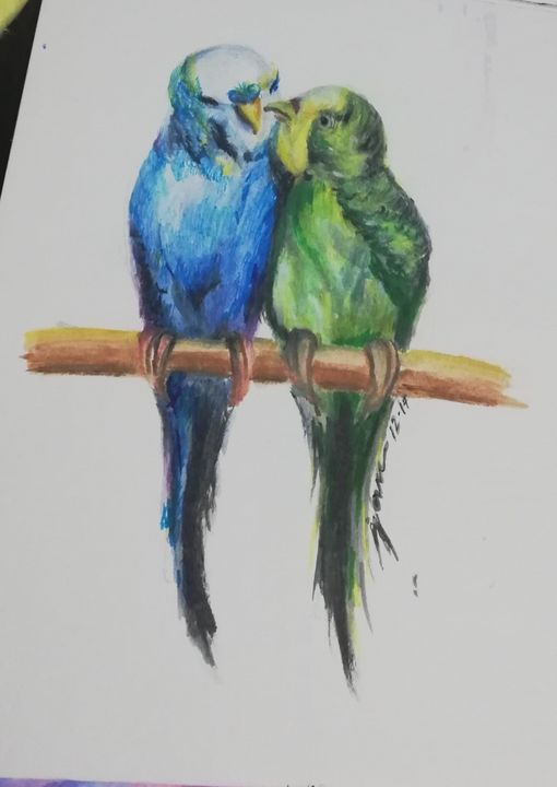 Budgie Love - Jan