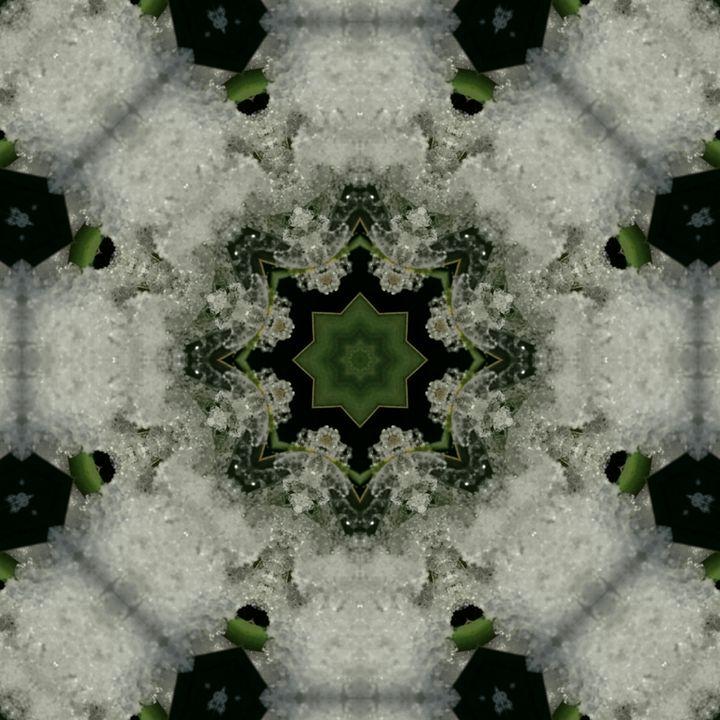 PhotoMandala1 - ArtNow