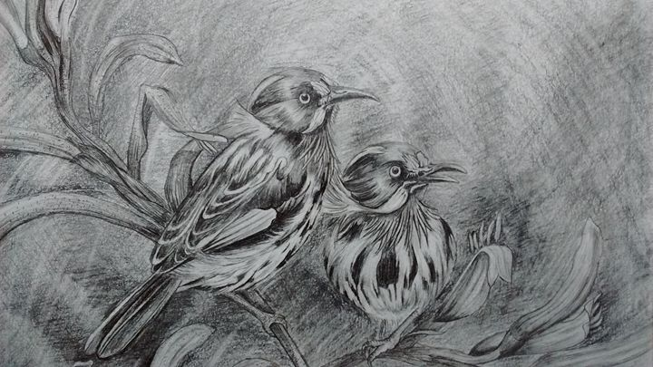Love Birds - Summer Sketching